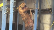 Someone in a Dinosaur Costume Totally Aced This 'American Ninja Warrior' Course